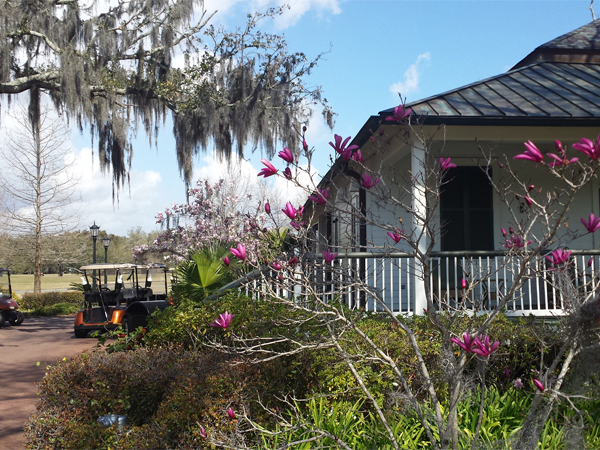 Spring is Springing in New Orleans